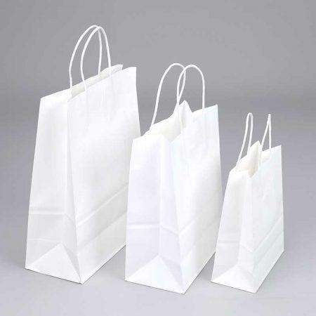 White Kraft Paper Bags Wholesale Factory (1)