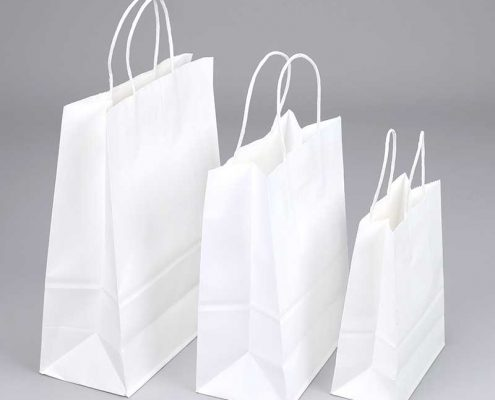 White Kraft Paper Bags Wholesale Factory (1)